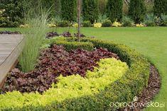 Garden border design