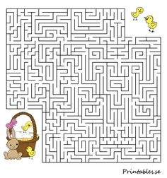 Labyrint: Hjälp kycklingarna en hitta sin påskkorg