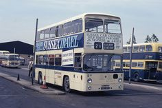 eastbourne buses - Google Search Road Transport, Bus Coach, Busses, Trip Advisor, Transportation, Trucks, Coaches, British, Cars
