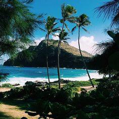 #beauty #nature #sea #palms #sky #mountains #island #luxury #life #travel #love #красота #природа #море #пальмы #небо #горы #остров #роскошь #путешествие #люблю #хочутуда by art125