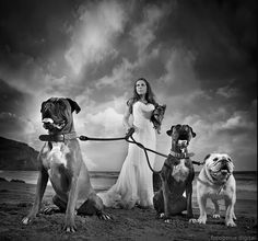 you bet your ass my dogs will be in my wedding pictures!!!- oh cousre they will!!!  before you marry and have human kids, THESE are your babies!