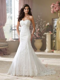 Dropped Waist Lace & Tulle wedding gown by David Tutera - Wilma