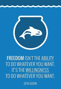 Freedom http://brentmanke.com/the-thirst-for-freedom/ #sethgodin #quote #icarusdeception