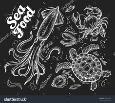 Seafood. Hand Drawn Vector Sketch Of A Turtle, Crab, Mussel, Oyster, Squid - 400281250 : Shutterstock