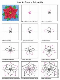 Poinsettia+Diagram-768x1024