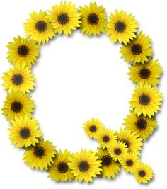 Alfabeto sunflowers .....Q