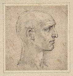 Head of a Man in Profile to Right -  Parmigianino (Girolamo Francesco Maria Mazzola)
