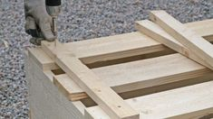 Odla i pallkrage – här är allt du måste veta | Leva & bo Texture, Wood, Crafts, Tips, Surface Finish, Manualidades, Woodwind Instrument, Timber Wood, Trees