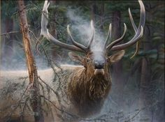 Jay Kemp, Close Encounter—Bull Elk, acrylic, 36 x - Southwest Art Magazine Big Game Hunting, Elk Hunting, Hunting Stuff, Pheasant Hunting, Turkey Hunting, Archery Hunting, Elk Pictures, Bull Elk, Deer Family