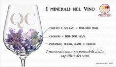 La mineralità nei vini