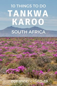 Just because it's remote doesn't mean there's nothing to do. Discover 10 things to do in the Tankwa Karoo from Gannaga Lodge. Cool Places To Visit, Places To Go, Africa Destinations, Travel Destinations, African Holidays, Stuff To Do, Things To Do, All About Africa, Africa Travel
