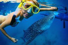 World's Best Islands for Snorkeling