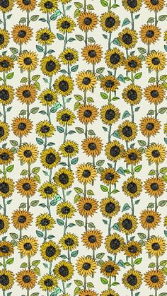 These Sunflower Are Created As A Juxtaposition The Sunflowers All Different But Somehow Create Pattern