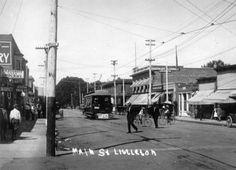 Main St. Littleton, 1909 :: Western History