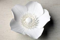Une fleur ravissante