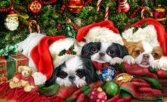 """New for 2012! Japanese Chin Christmas Holiday Cards are 8 1/2"""" x 5 1/2"""" and come in packages of 12 cards. One design per package. All designs include envelopes, your personal message, and choice of greeting. Select the inside greeting of your choice from the menu below.Add your custom personal message to the Comments box during checkout."""
