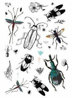 Een print met verschillende insecten