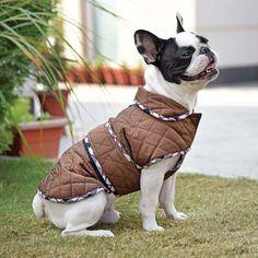 HUFT Grrrberry Dog Jacket - Brown