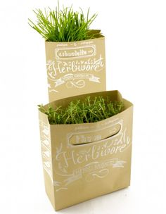 38 Beste Afbeeldingen Van Packaging For Potted Plants Flower