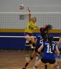 <p>*En Voleibol Femenil, ganan al Itesm-Chihuahua 3-0<br /> *En Rápido Varonil derrotan a la UAC en Shoot Out 2-0<br /> *Adelitas, van