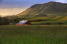 Summer Time. Old Red Barn. Montana. Local. North 40 Outfitters - Photography