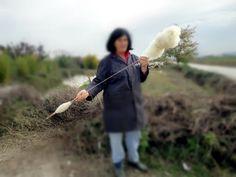 Albanian shepherd spinning, November 2012. Mujer con ovejas e hilando en Albania nov 2012_Borrosa @Habetrot