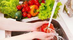 Tão importante quanto escolher bem os alimentos que compramos é saber armazená-los da maneira correta para que eles não percam suas propriedades nem estraguem rapidamente. Alimentos que compramos in natura e delicados, como verduras e legumes, exigem cuidados especiais. Por isso, nada de colocá-los de qualquer jei