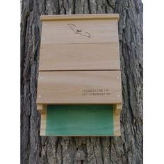 Put a bat house or two around your garden or yard. Bats are great natural bug control. OBC Triple Chamber Bat House. This houses have a greater than 80% occupancy rate, as compared to only 10% with some other designs.