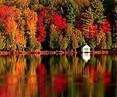 autum in new england - Bing Obrazy