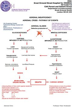 Adrenal Crisis Pathway of Events (click for pdf)