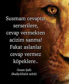 Laf.. Özlü Sözler güzel sözler Azerbaijan Travel, Missing My Love, Good Sentences, Islamic World, Cool Words, Quotations, Affirmations, Wisdom, Sayings