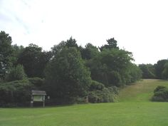 South Weald Country Park