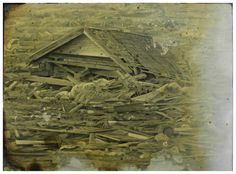 Demiak: Iwate Prefecture, Japan, 2011.  24 x 33 cm.  Oil and acrylic on MDF, 2011