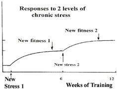 Running Training: Principles & needs