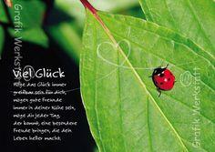 Viel Glück - Postkarten - Grafik Werkstatt Bielefeld