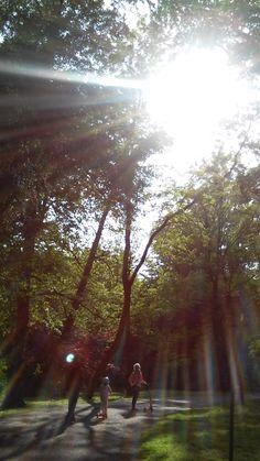 My nature photo