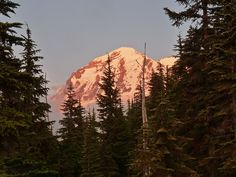 Rainier Sunset from Golden Lakes Campground