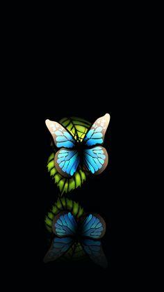 Blue Butterfly Black Background iPhone 6 Plus HD Wallpaper 1 - pix wallpapers Windows Vista Wallpaper, Wallpaper S8, Android Wallpaper 4k, 3d Wallpaper Blue, Black Background Wallpaper, Mobile Wallpaper, Black Backgrounds, Wallpaper Backgrounds, Dragonfly Wallpaper