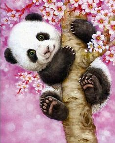 Painting - A Panda On the Cherry Tree Diamond Painting - A Panda On the Cherry Tree - Free worldwide shipping. New original designs every day. We also offer tools lighting pad, quick painting pens. Buy Diamond Painting on Diamond Painting - A Panda On. Panda Painting, Diy Painting, Painting Plastic, Panda Tree, Panda Drawing, 5d Diamond Painting, Diamond Drawing, Cute Panda, Cross Paintings