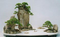 Penzai, Chinese Bonsai, Potted Landscape