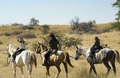 The Tswalu game reserve in the Kalahari Desert in South Africa redefines the safari experience. Sleeping Under The Stars, Majestic Horse, Game Reserve, African Safari, Day Tours, Horseback Riding, Horse Riding, Tanzania, South Africa
