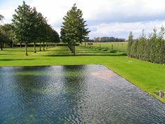Country Landscaping, Modern Landscaping, Garden Pool, Water Garden, Modern Pond, Landscape Design, Garden Design, Farm Pond, Sacred Garden