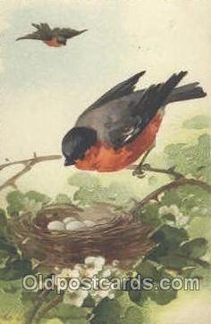 Catherine Klein postcard.