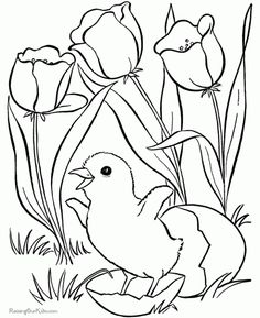 504 Best Coloring Pages Template Images On Pinterest Coloring