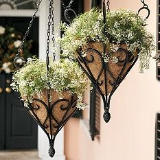 Search Results for hanging planters - Frontgate