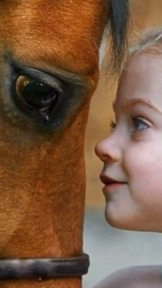 Little girl looking in the eyes of her horse, face to face close up. Stunning horse photography. Look at those kind eyes on the horse and the sweet ones on the girl! https://feelmyvibe.com/collections/all/horse-paintings