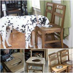 DIY Dog Bowl Chair
