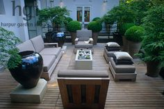 Harpur Garden Images :: sul38b Deck patio terrace seat chair furniture style chic contemporary modern minimal empty pot container urn vase table relax entertain dining dine sofa box buxus acer symmetry light Design: Luciano Giubbilei, London. UK Jerry Harpur