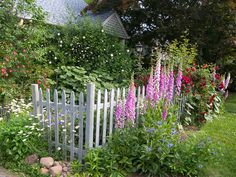 cottage garden with fence