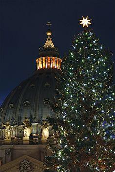 Vatican Christmas tree, St. Peter's Basilica